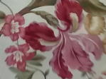 deep pink orchid or lily on cream background
